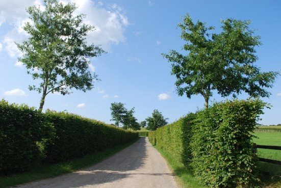 Driveway haras