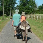 donkey trek